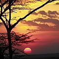 Kenyan Sunset by Gilad Flesch