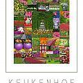 Keukenhof Gardens Poster by Mike Nellums