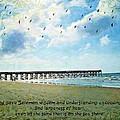 1 Kings 4 29 Pier by Michelle Greene Wheeler