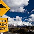 Kiwi Crossing Road Sign And Volcano Ruapehu Nz by Stephan Pietzko