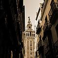 La Giralda - Seville Spain by Andrea Mazzocchetti