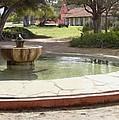 La Purisima Fountain by Sharon Foster