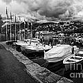 Lake Maggiore Bw by Timothy Hacker