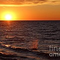 Lake Ontario Sunset by Jemmy Archer