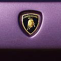 Lamborghini Diablo Se Roadster Emblem by Jill Reger