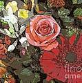 Lancaster Flowers by Joseph J Stevens