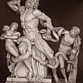 Laocoon And His Sons by Michael Kirk