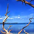 Las Cabezas Bay by Thomas R Fletcher