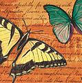 Le Papillon 3 by Debbie DeWitt