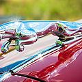 Leaping Jaguar by Sebastian Musial