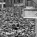Letchworth Village Cemetery by Art Dingo