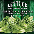 Lettuce Farm by Marvin Blaine