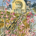 Lillies Of Mendocino by Pat Irish Amez