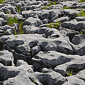 Limestone In The Burren by John Shaw