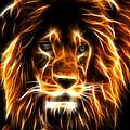 Lion  by Mark Ashkenazi
