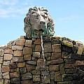 Lion Water Fountain. by Oscar Williams
