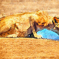 Lioness Drinking by George Rossidis