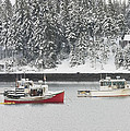 Lobster Boats After Snowstorm In Tenants Harbor Maine by Keith Webber Jr