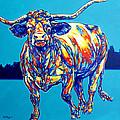 Longhorn by Derrick Higgins