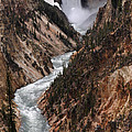 Lower Falls Of The Yellowstone by Cyril Furlan
