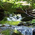 Lower Granite Falls 1 by Mike Wheeler