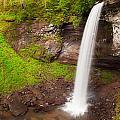Lower Hills Creek Falls by Michael Blanchette