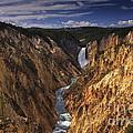 Lower Yellowstone Falls II by Mark Kiver