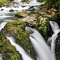 Lush Waterfall Olympic National Park by Tom Norring