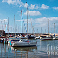 Lyme Regis Harbour 2 by Susie Peek