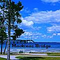 Mackinac Bridge by Gary Wonning
