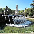 Madrid Fountain by Ted Pollard
