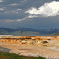 Mammoth Hot Springs by Jemmy Archer