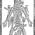 Man Of Signs, 1495 by Granger