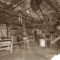 Manteca Packing Company California Circa 1920 by California Views Archives Mr Pat Hathaway Archives