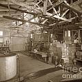 Manteca Packing Company Interior California Circa 1920 by California Views Archives Mr Pat Hathaway Archives