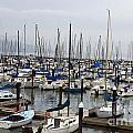 Marina San Francisco by Jason O Watson
