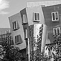 Massachusetts Institute Of Technology Stata Center by University Icons