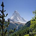 Matterhorn In Zermatt by Mats Silvan