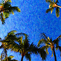 Maui Palms by Lars Lentz