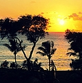 Maui Sunset by Leslie Hunziker