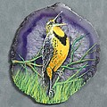 Meadow Soloist I by Bob Williams