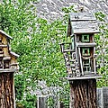 Melba Idaho  by Image Takers Photography LLC