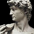 Michelangelo 1475-1564. David by Everett