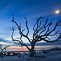 Moonshine by Debra and Dave Vanderlaan