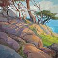 Morning Light At Point Lobos by Tonya Zenin