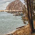 Morro Rock Reflection by Sharon Foster