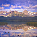 Mount Chephren And Waterfowl Lake by Tim Fitzharris