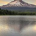 Mount Hood At Trillium Lake Sunset by David Gn