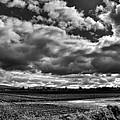 Mount Vernon Farmland - Washington State by David Patterson