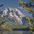 Mt. Moran And Jenny Lake by Ed  Cooper Photography
